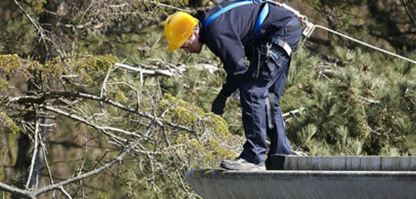 five things you need to know about working at height safely
