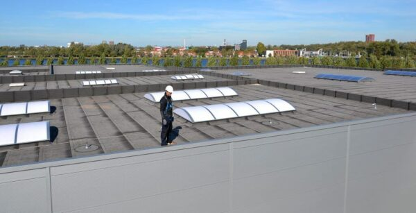 Fall protection for roof with skylights
